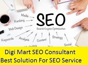 Best Seo service providers in Digital Marketing in Pune.