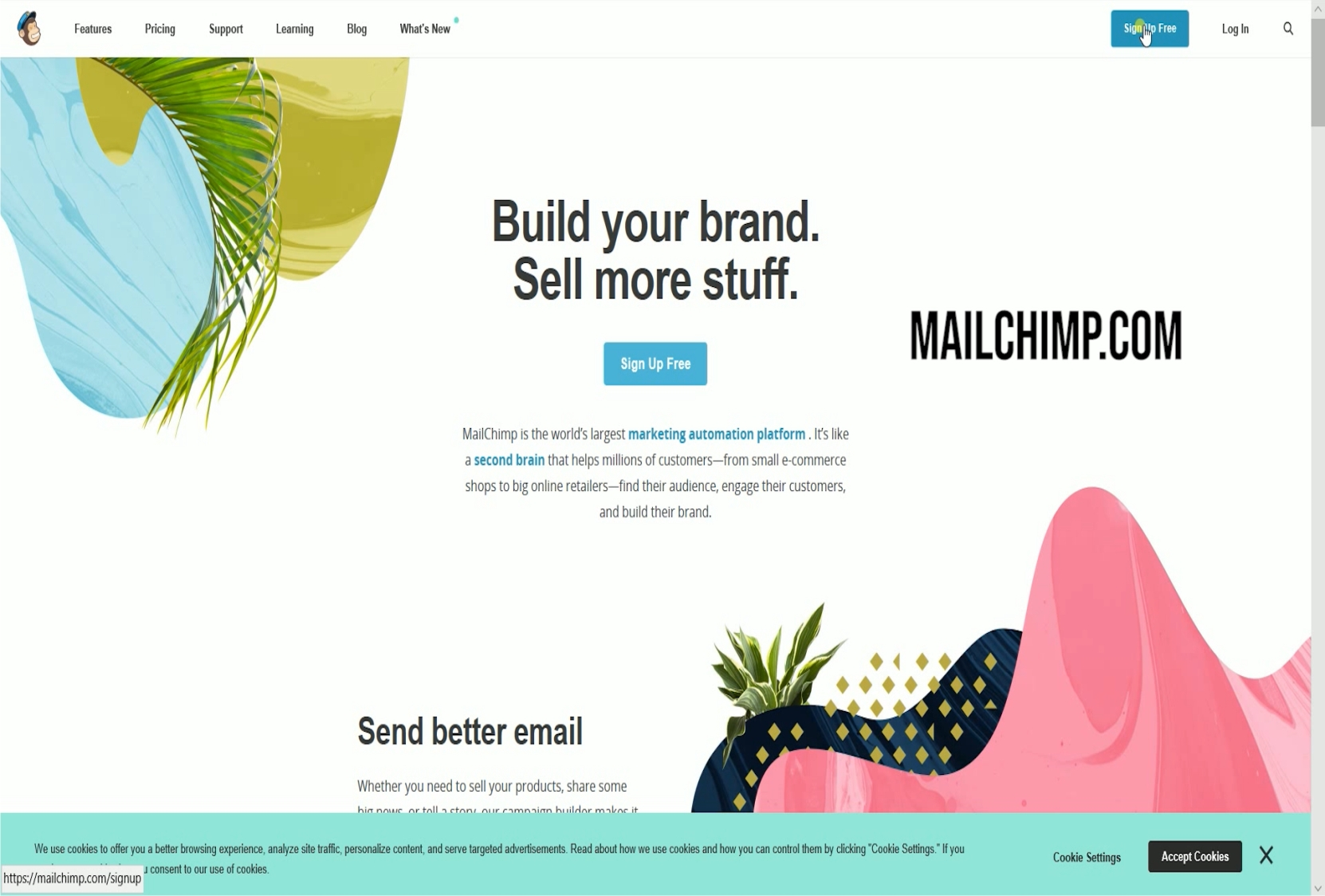 I will create you a mailchimp email campaign and template for your website and also newletter