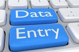 I will do any type of data entry as excel, word, pd,  pdf fillable form etc.