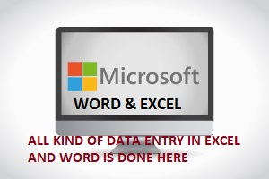 Data Entry in MS Excel and MS Word