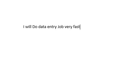 I will Do Data Entry Job Very Fast
