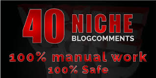 40 Blog Comments Niche Relevant Backlinks High DA PA Sites Manually