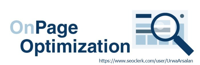 I Will Do OnPage SEO According to Update Search Engine Algorithm