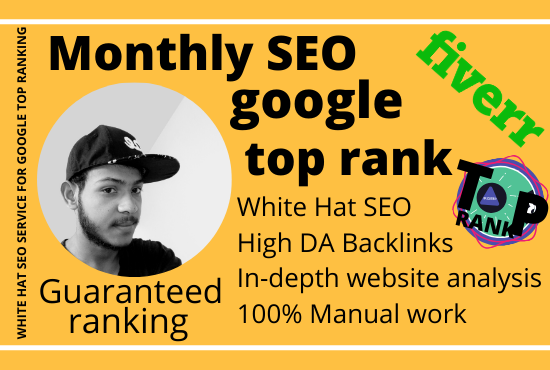 I will provide monthly SEO service for google top ranking