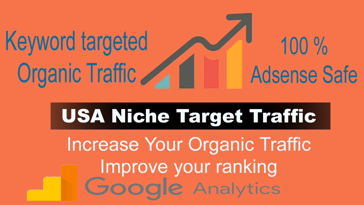 USA niche targeted organic traffic from google For 30 Days