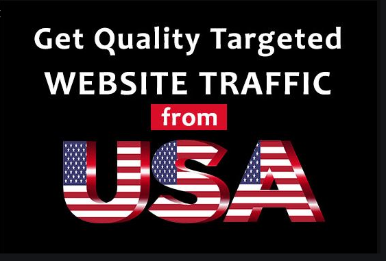 drive real targeted usa website traffic daily visitors
