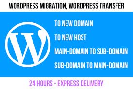 I will migrate wordpress website in 24hours