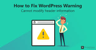 I will fix wordpress website issues or errors in 24 hrs