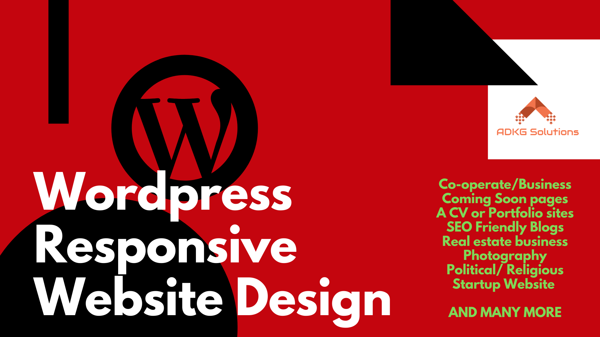 I will build a professional wordpress website design responsive