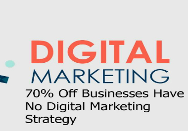 I will provide digital marketing strategy for your business or work