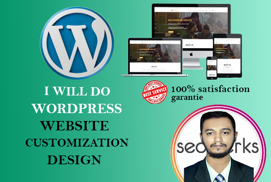 I will design a responsive wordpress web site up to 3 up to 10 pages and customization
