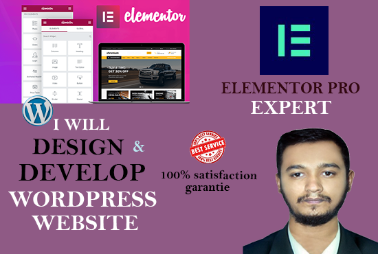 I will create wordpress website using elementor pro page builder