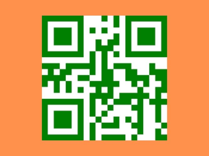 I will Customise a QR code for you
