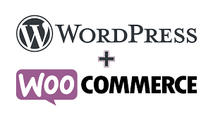 build ecommerce website online store with wordpress woocommerce