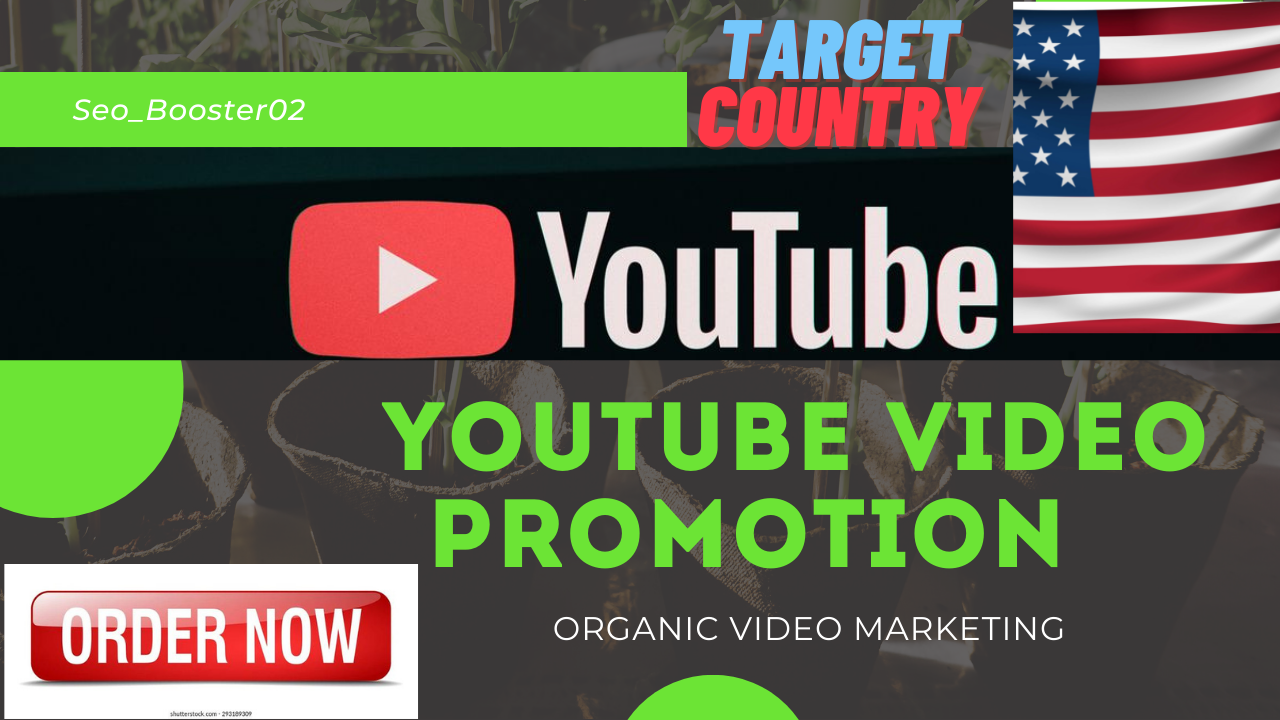 I will do USA YouTube video promotion and target country