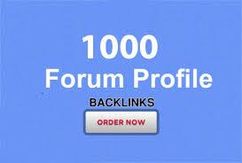 1000 forum profiles backlinks provide