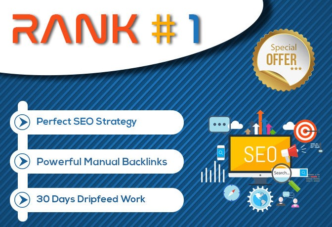 I Will Create Monthly Seo Package With Daily Reports,  Done Manually
