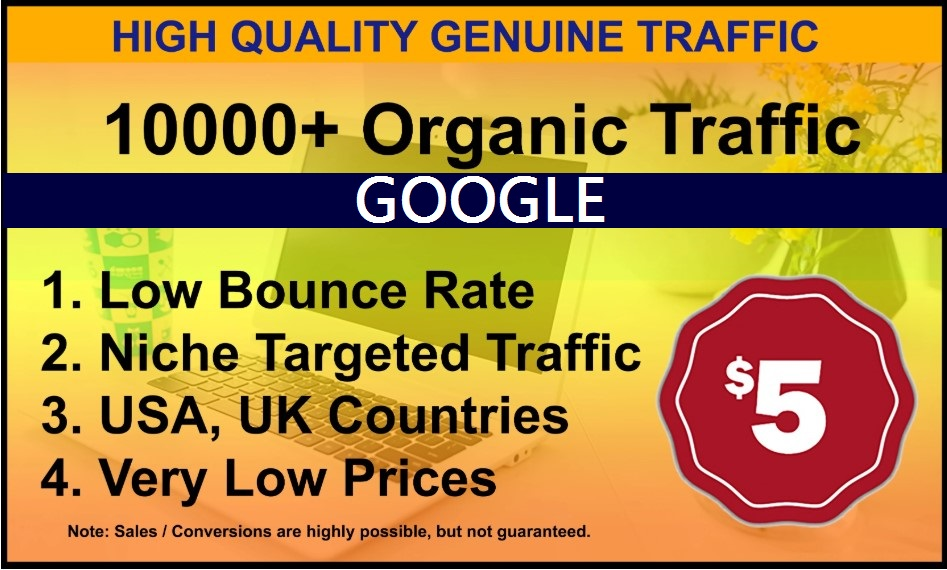 I will drive high quality website traffic from google for 7 days