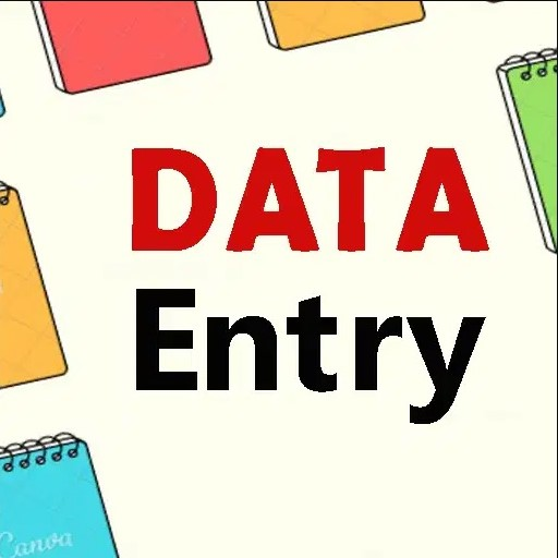 i will do accurate and fastest Data Entry for you per page