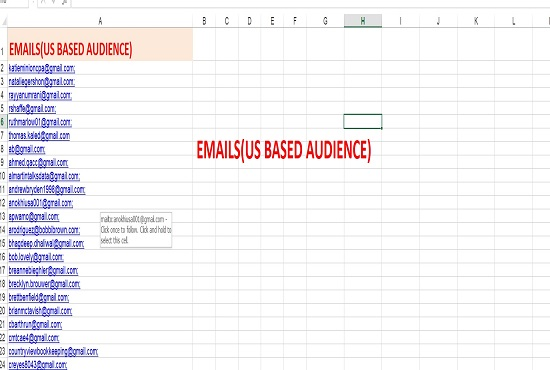 I will deliver 5k USA active email list for email marketing