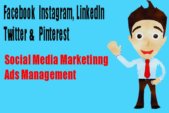 I will setup your all social media account & will be your manager