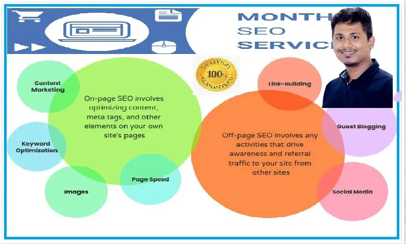 I will do monthly SEO service for top google ranking