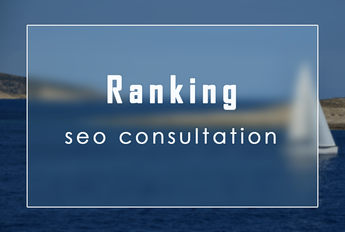 Consultation on Ranking in SEO