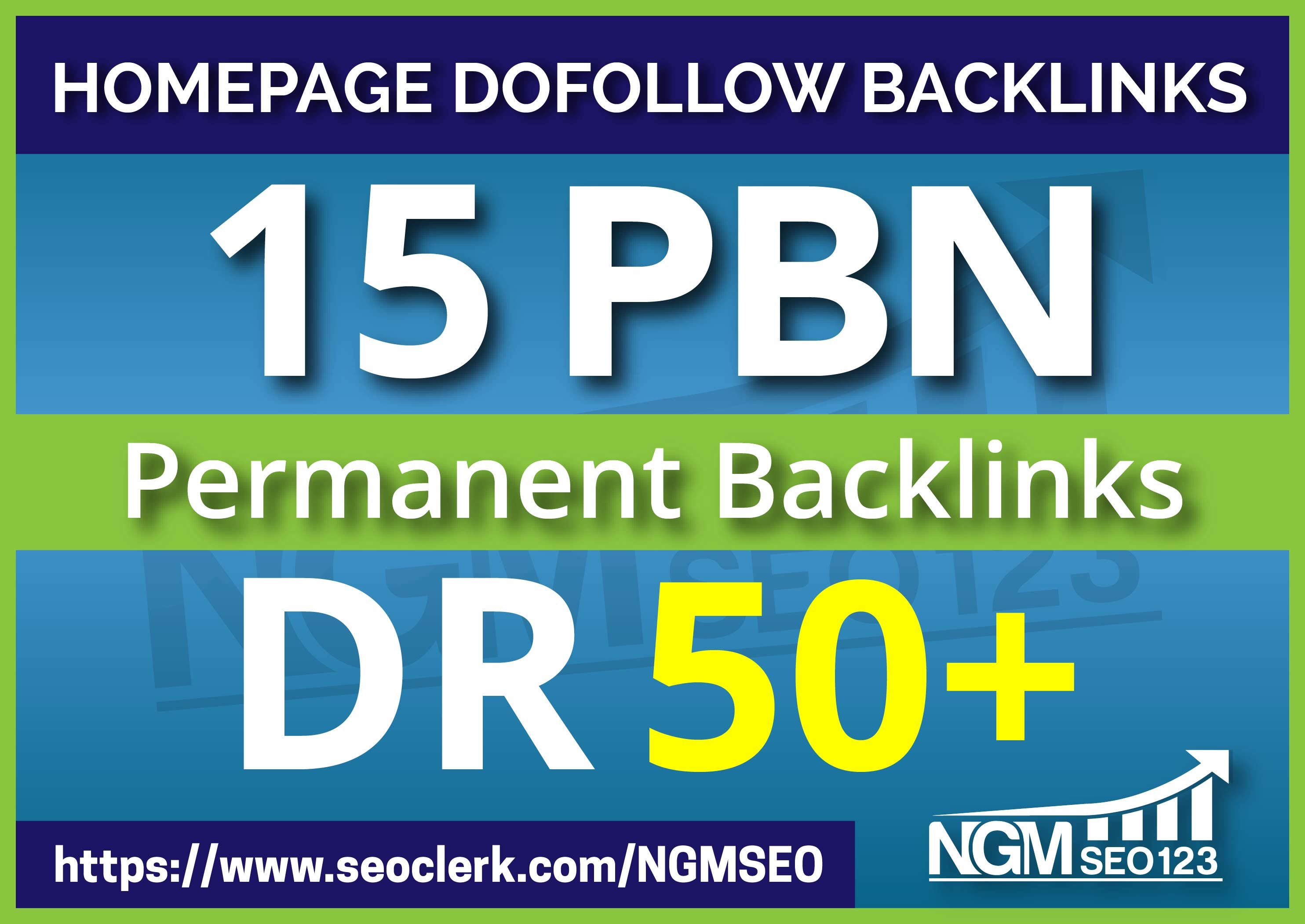 Provide 15 PBN DR 50 Plus Homepage Permanent Backlinks