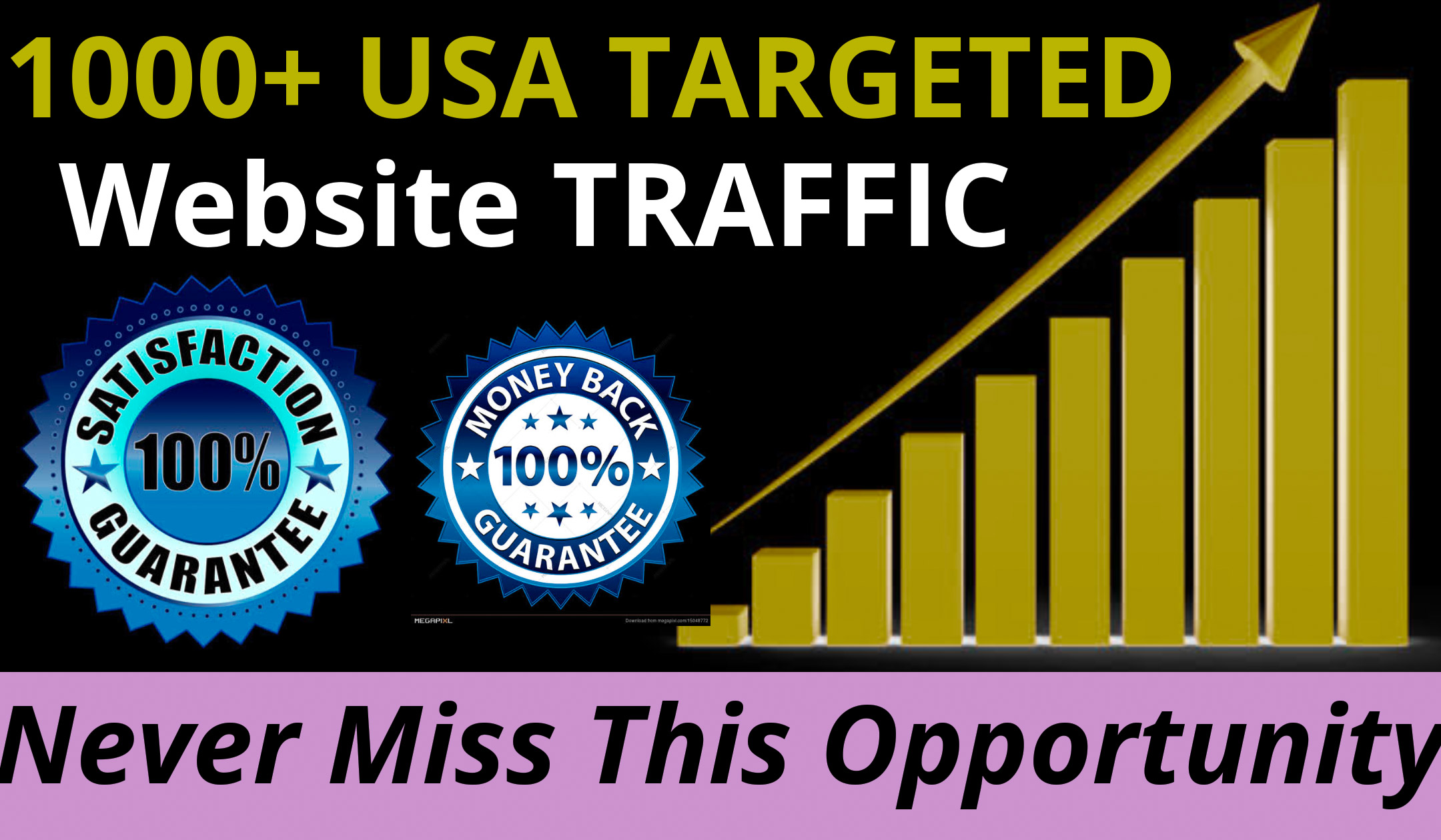 1000+ USA Targeted Website Traffic Within 24 Hours