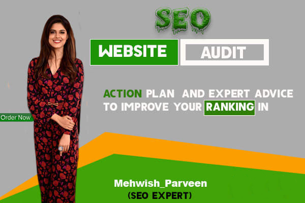 I will provide expert SEO audit report,  action plan and implement it