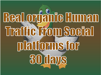 Real organic traffic daily 500+ visitors to your site via social networks for 30 days none stop