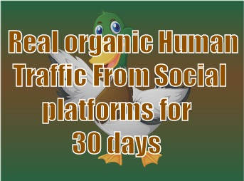 Real organic traffic daily 400+ visitors to your site for 30 days none stop.