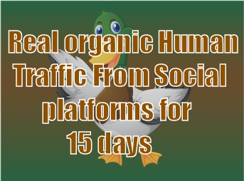 Real organic traffic daily 300+ visitors to your site via social networks for 15 days none stop
