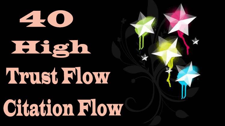 I will do 40 High Trust flow and Citation flow seo backlinks on high da