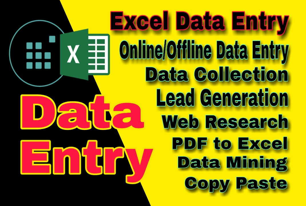 I will provide data entry service