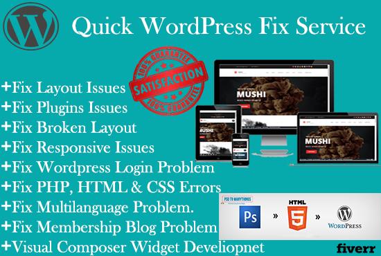 Fix Wordpress Issues and Wordpress Customization