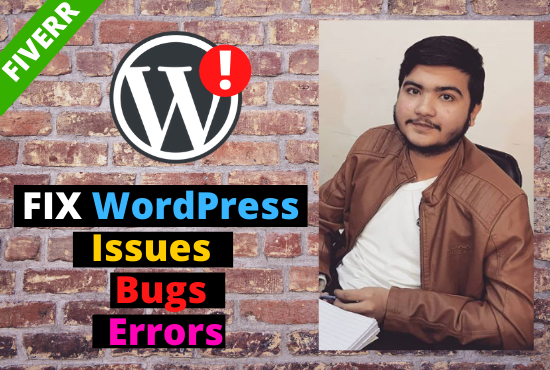 I will fix wordpress issues of your website in 24h