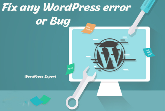 I will fix any wordpress error or bug