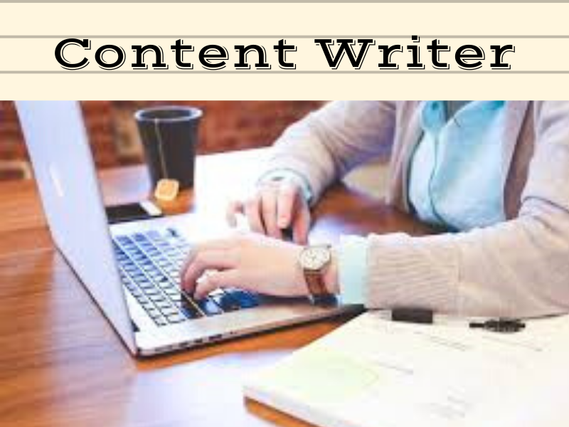 content writer and blog writer i can provide fresh content for your business