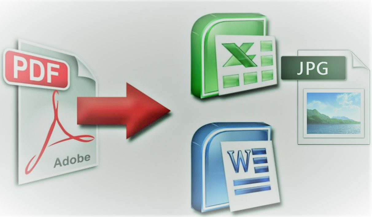 I will data enter for you and convert your images and pdf files into word or excel