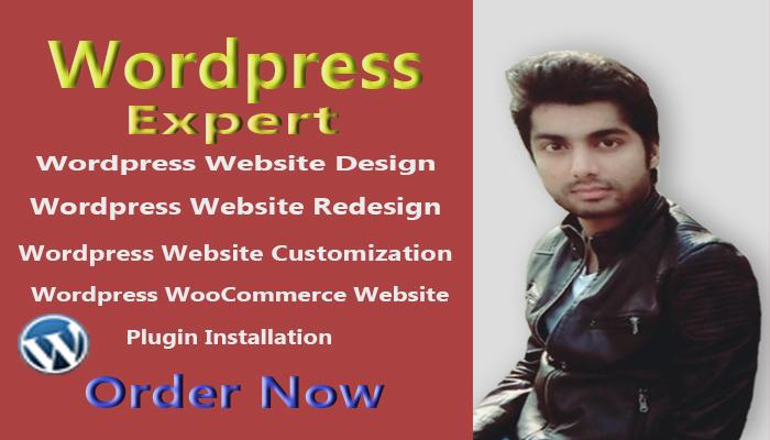 I will customize your stunning wordpress website