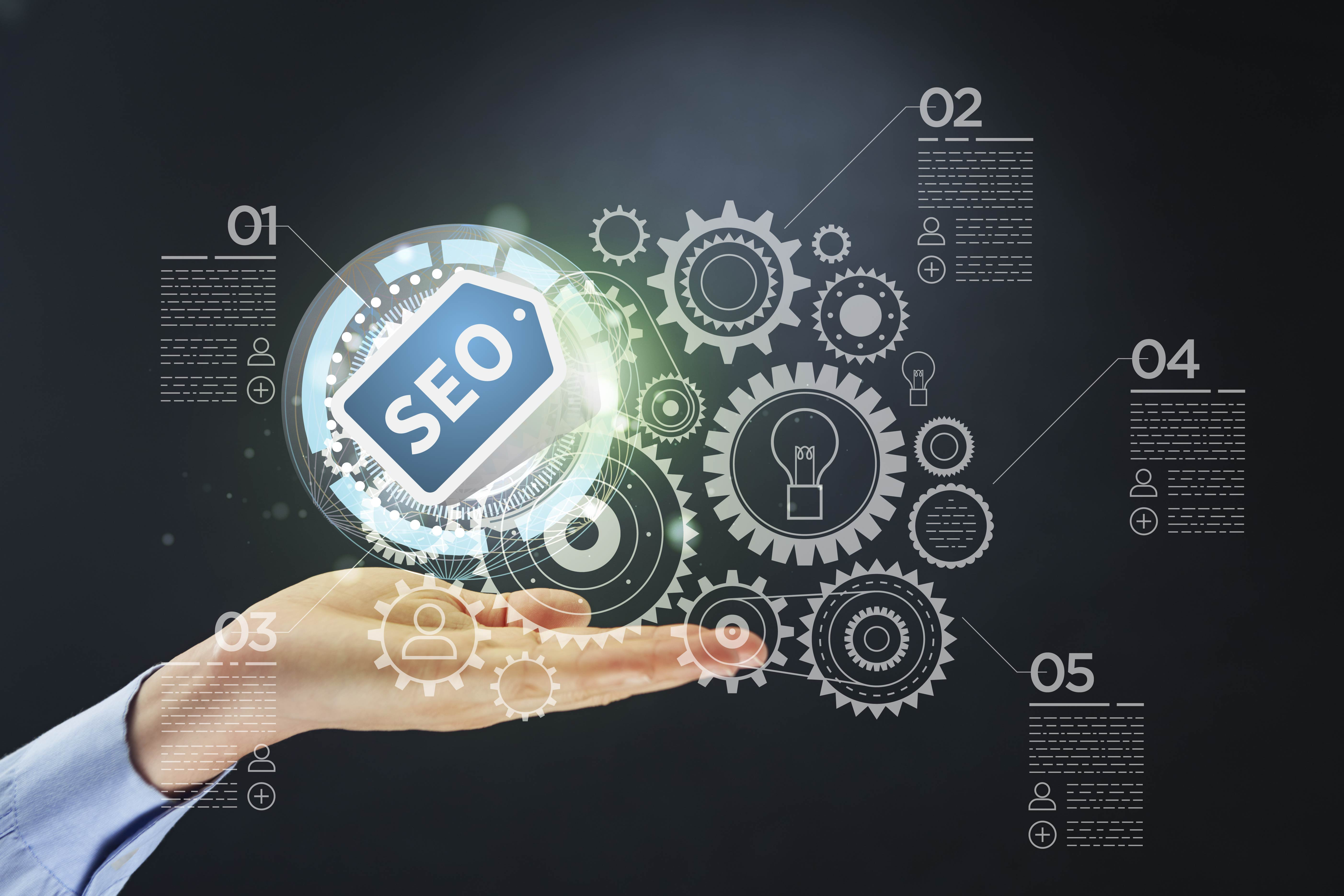 I will do an expert SEO audit on your website/s