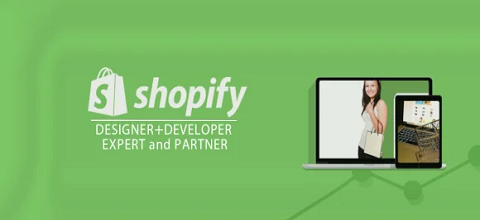 I will setup, edit theme shopify or any thing about shopify api