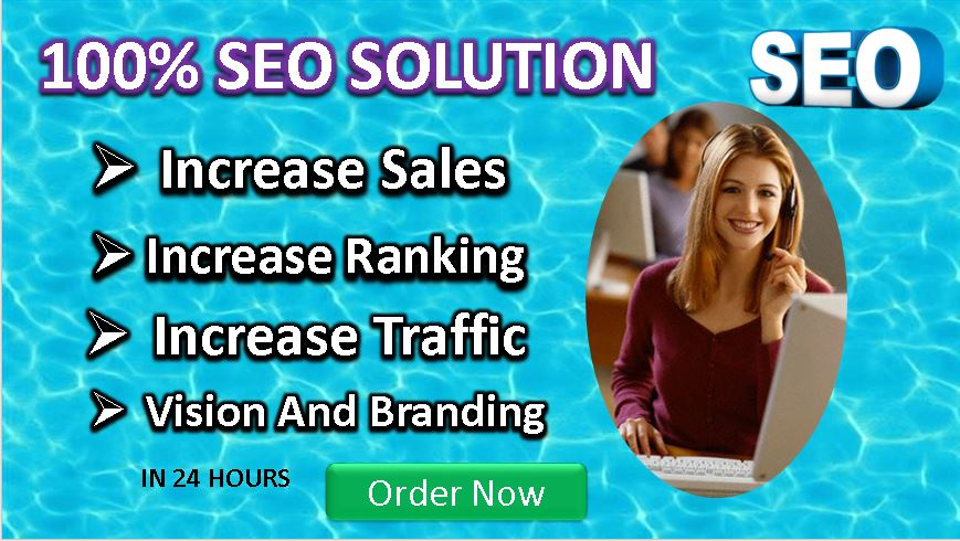I will do SEO optimization for your WordPress website