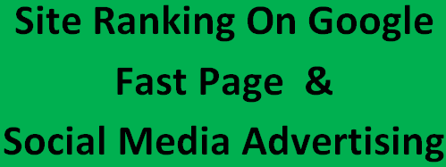 i will do on-page seo, off-page seo for google fast page