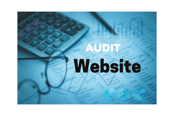I will audit your present website completely with a report in 24 hours