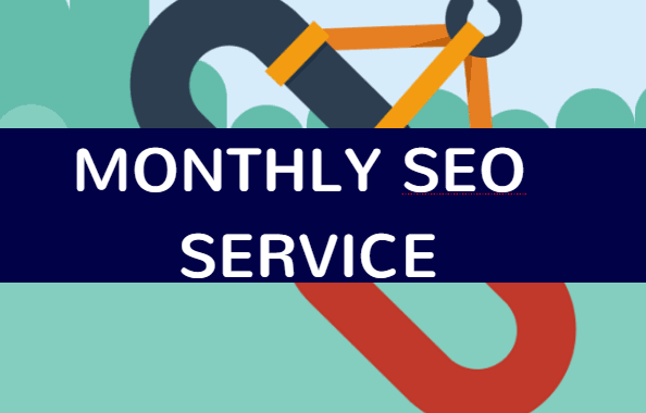 MONTHLY SEO SERVICE - plug your website for boost your ranking