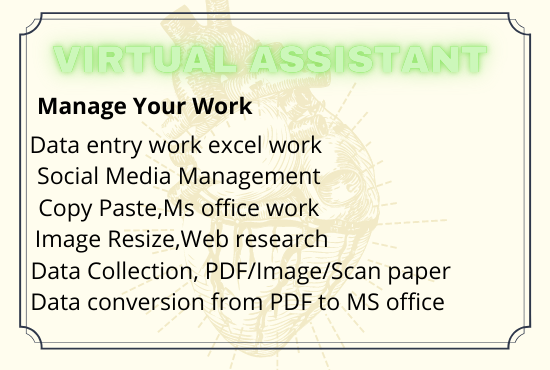 I will provide Virtual assistance perfect data collect, scrapping data entry
