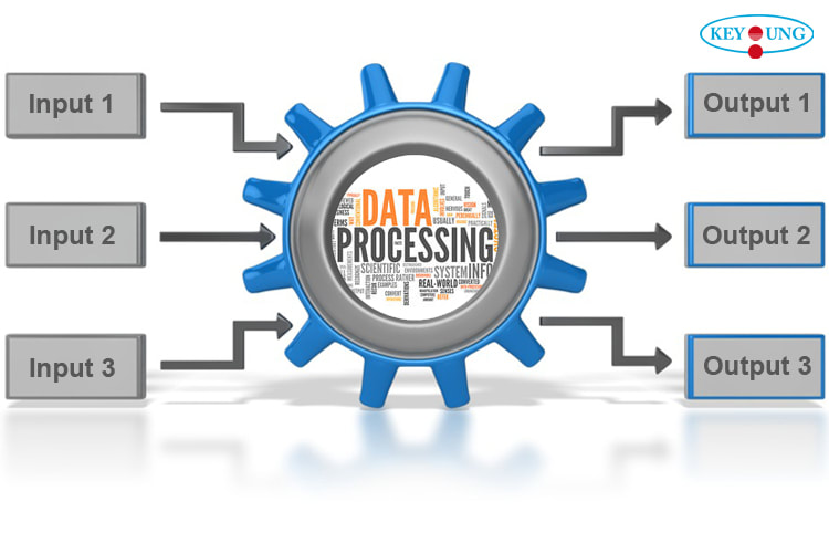 will provide 5k data processing service