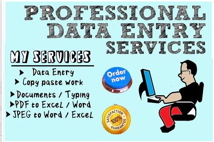 i can do data typing, data entry and manually file conversion upto 2500 words
